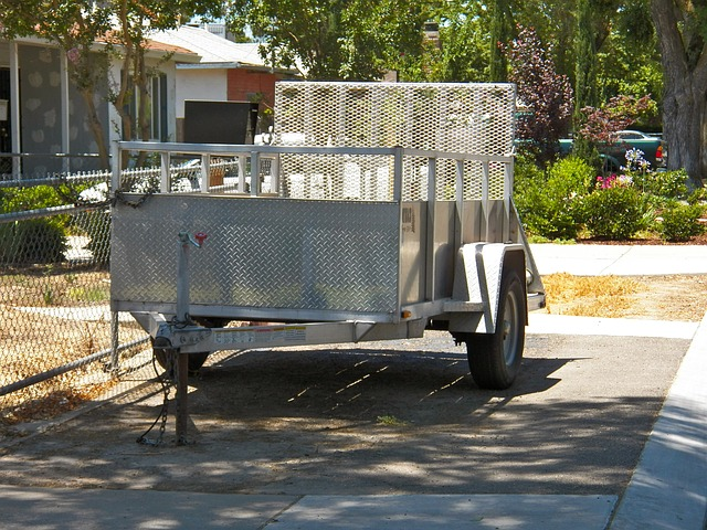 vozík za auto.jpg